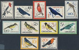 """1962-63 Uruguay MLH OG set of 11 beautiful stamps """"Birds"""" YT A234-243"""