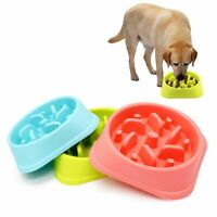 Pets Puppy Dog Interactive Fun Feeder Large Slow Bowl Puzzle Bowl Maze Food Dish