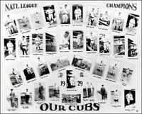 1929 Chicago Cubs Photo 8X10 - National League Pennant
