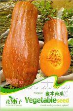 1 PackPumpkin Seeds Nutrient Vegetables Seeds Organic Garden Plant Hot C044