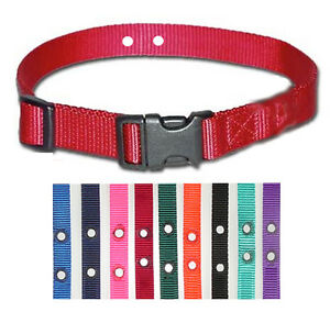 """3/4"""" 2 hole 1.25"""" Dog Fence Nylon Dog Collars 5 Strap Value Pack"""