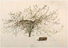 "Andrew Wyeth    ""After Picking""     MAKE OFFER"