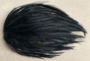 Montage de plumes anciennes noires—Chapeau / bibi—Années 1900/1920