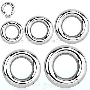 2pcs. Surgical Steel Segment Ring Hoop Earrings Labret Nose Ring Septum 18G-2G