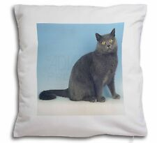 Blue Chartreax Cat Soft Velvet Feel Cushion Cover With Inner Pillow, AC-34-CPW