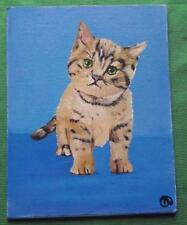 Trambusto CAT: giornaliera IMPRESSIONISTA ORIGINALE Pittura ad Olio da Terry Wylde