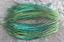 10pcs green peacock feather sword 12-14 inch left and right sides symmetrical