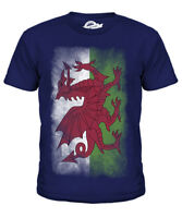 WALES FADED FLAG KIDS T-SHIRT TEE TOP WELSH FOOTBALL GIFT SHIRT CLOTHING JERSEY