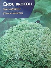 Graines semences Chou Brocoli vert Calabrais.__ Seeds 150 graines