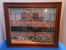 LAMINATED FRAMED PHOTO OF MIAMI DOLPHINS VS TENNESSEE