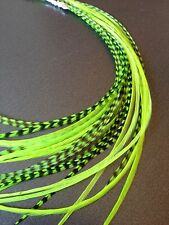 Lot 10 Neon Green Grizzly Feathers Hair Extensions long thin striped Real GREEN