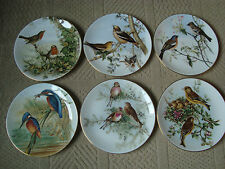 SET 6 COALPORT COLLECTOR PLATES JOHN GOULDS BIRDS OF BRITAIN LIMITED 15000