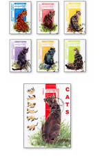 KASAFG00011 Cats 6 STAMPS AND BLOCK CANCELED AFGANISTAN 2000