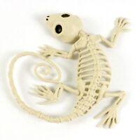 Halloween Gecko Dead Animal Skeleton Bones Decoration Prop Mxt #bi sdRQv