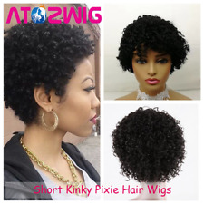 Us Short Afro Curly Black Wigs Pixie Cut Human Hair Wig African American Women