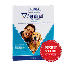 Sentinel Spectrum for Large Dogs 23-45kg 12 Pack flea heartworm and wormer