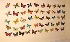 Butterfly Wall Stickers Nursery Childrens Baby Kids Girls Stickarounds Decals