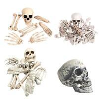 Life-Size Bag 28pcs Bones Human Skeleton Body Parts Halloween Prop Haunted House