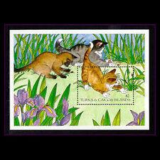 Turks & Caicos, Sc #1152, MNH, 1995, S/S, Cats, CA308