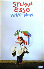 SYLVAN ESSO What Now 2017 Ltd Ed RARE Poster +FREE Pop Dance Electronic Poster!