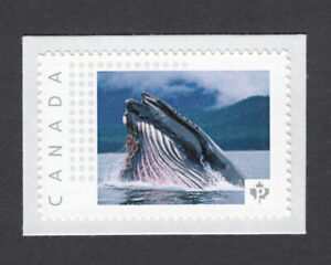 lq. WHALE = picture postage personalized stamp Canada 2014 MNH p5mL3--1