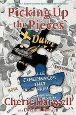 Picking up the Pieces : Dump It! Series by Cherie Harwell (2007, Paperback)