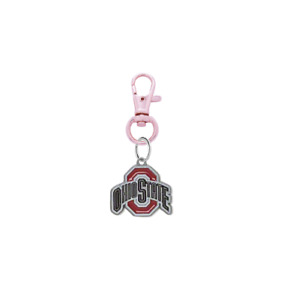 Ohio State Buckeyes Pet Tag Collar Charm College Dog Cat - Pick Your Color