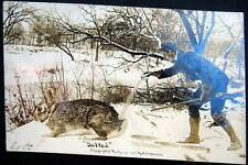 **1909 MARTIN EXAGGERATION PC ~ HUNTER WITH RIFLE SPRINKLING SALT ON RABBIT~RPPC