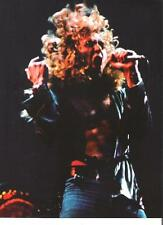 "LED ZEPPELIN Robert a mass of hair magazine PHOTO / mini Poster 11x8"""