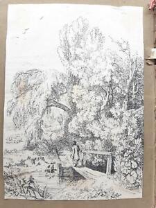 Havell William Album  Disegni-Drawings-Originali-40 Cartoline-1820 C.A.