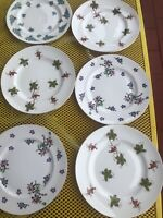 Royal Victoria Fine Bone China England Set of 8 Salad Dessert Plates Floral 8""