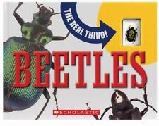 Beetles by Mary Packard (NEW Hardcover) Real beetle included!