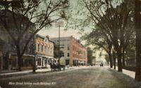 Herkimer NY Main St. c1910 Postcard