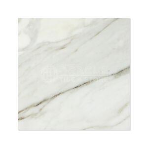 Calacatta Gold (Italian Calcutta) Marble 18 X 18 Field Tile