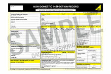 Gas Safe - Non Domestic Inspection Record