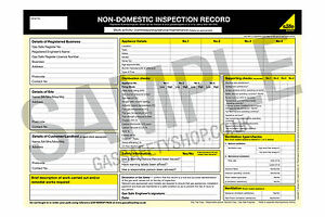 Gas Safe - Non Domestic Inspection Record - pad6