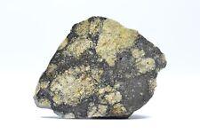 Meteorite NWA 11576 - Eucrite-melt brecc. - found 2017 in NWA full slice 6.0 g