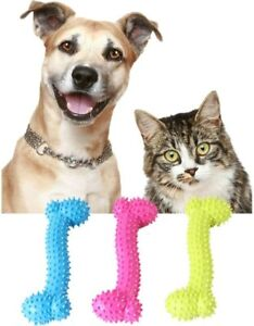 Durable Pet Dog Cat Puppy Bone Shape TPR Tooth Cleaning Molar Bite Chewing toy