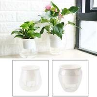 US Transparent Self Watering Plant Flower Pot Plastic Clear Home Garden Decor