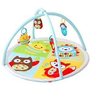 Skip Hop Explore and More Funscape Baby Activity Gym, Suitable from Birth