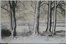 Color Lithograph Landscape of English Rural Scene
