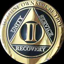 2 Year AA Medallion Black Gold Plated Bi-Plate Alcoholics Anonymous Chip Coin