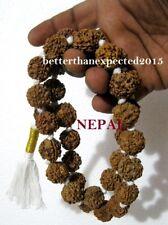 6 MUKHI RUDRAKSHA SIX FACE RUDRAKSH MALA KANTHA NEPAL32+1 COLLECTOR 20 MM BEADS