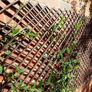 Extra Strong Expanding  Willow Trellis- 1.8m Length - Different Sizes Available