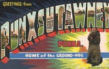 Large Letter Postcard,Greetings From Punxsutawney,PA,Ground Hog Day,Used,1948