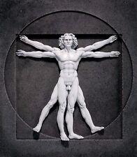 Resin Vitruvian Man Wall Sculpture Toscano Leonardo de Vinci Renaissance Art