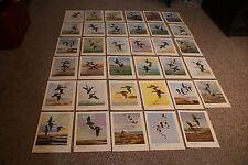 Lot Of 35 Vintage 1940's  Angus H. Shortt Bookplate Art Prints Ducks/Geese/Water