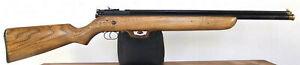 Rare Vintage Crosman Model CR113 .177 CO2 Air Rifle -- Refinished & Resealed