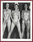 1950s+Vintage+Risque+Photo%7E3+Perfect+Thick+Body+Big+Firm+Perky+Puffy+Pinups+Pose