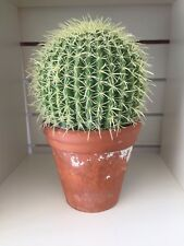 Highly Realistic Succulent Barrel Cactus Plant In A Rustic Terracotta Plant pot